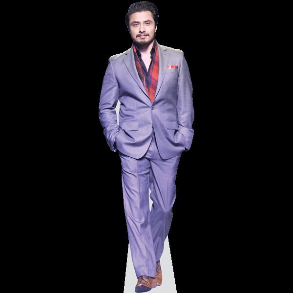 Ali Zafar (Grey Suit)