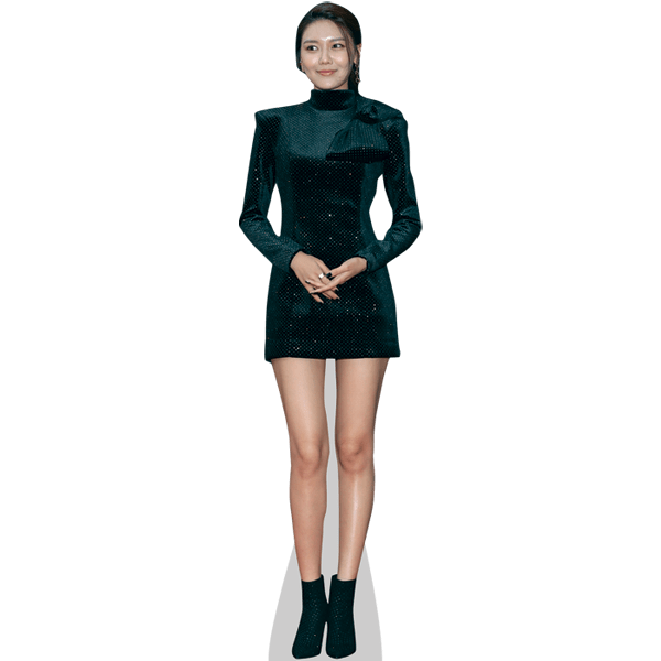 Sooyoung (Girl's Generation)