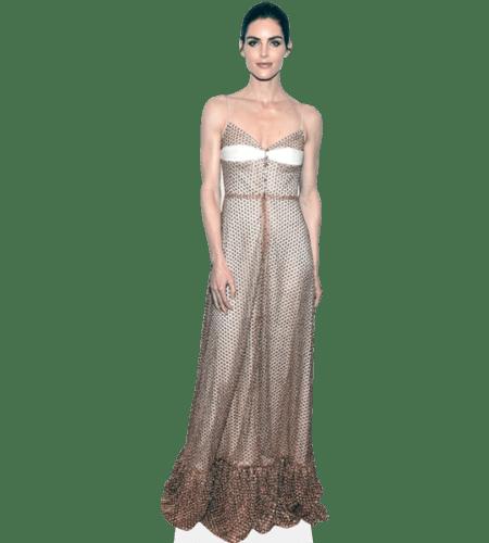 Hilary Rhoda (Long Dress)