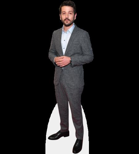 Diego Luna (Grey Suit)