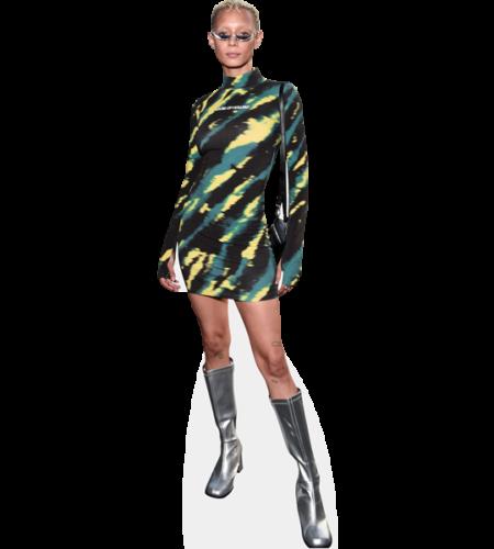 Jazzelle Zanaughtti (Boots)
